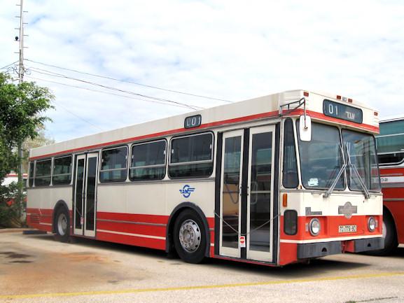 Egged Buses
